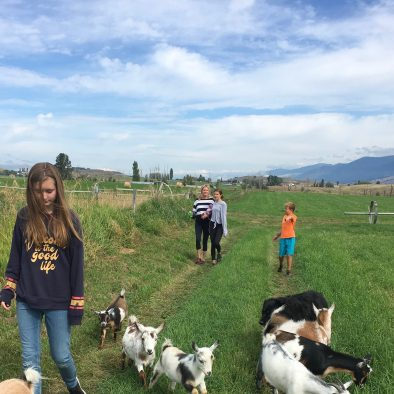 Ranch Stays Montana